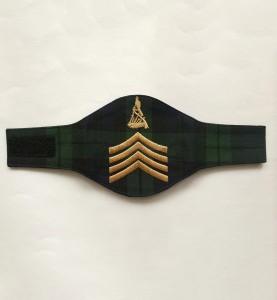 کڑھائی شدہ فوجی بریسارڈ